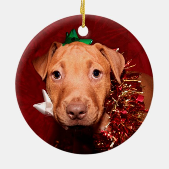 Pitbull Christmas Ornament.Pitbull Puppy Christmas Ceramic Ornament