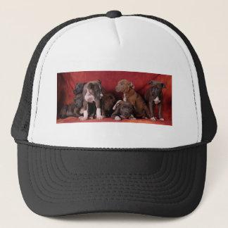 Pitbull puppy heaven trucker hat