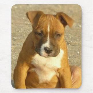 Pitbull puppy mouse pad