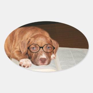 Pitbull puppy reads oval sticker
