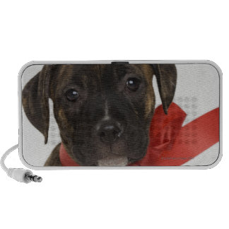 Pitbull puppy wearing red ribbon mp3 speakers