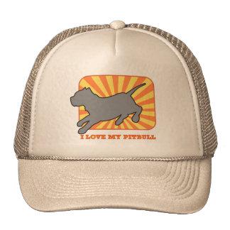 Pitbull Silhouette at Sunset Hat