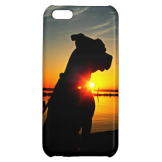 Pitbull Sunrise iPhone 5C Cover