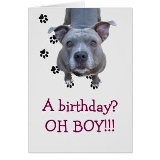 Pitbull Table Scraps Birthday Card