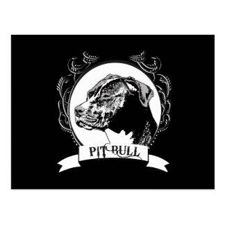 PITBULL POSTAL