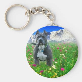 Pitbull Terrier americano azul, pico de los lucios Llavero Redondo Tipo Pin