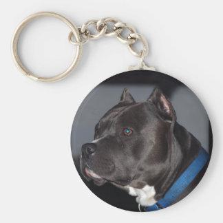 Pitbull Terrier americano Llaveros