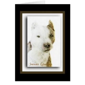 Pitbull Terrier americano Tarjetón