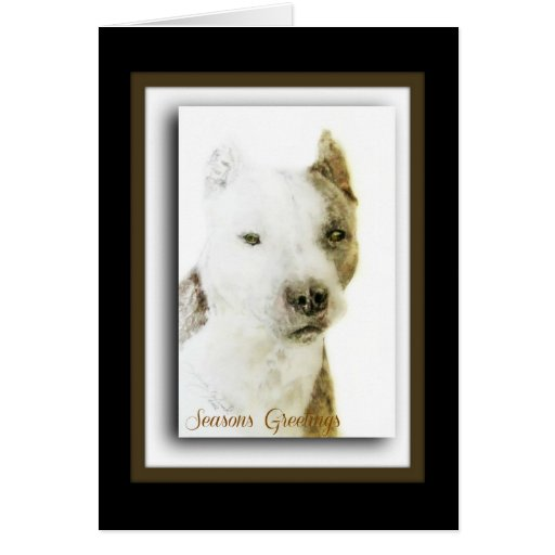 Pitbull Terrier americano Tarjeta De Felicitación