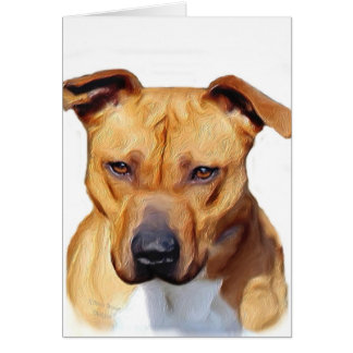 Pitbull Terrier Card