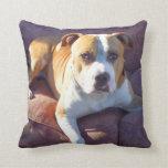 Pitbull terrier dog pillows