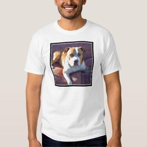 Pitbull terrier dog t-shirt