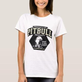 PITBULL University T-Shirt