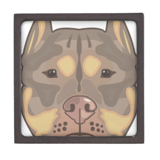 Pitbull vector gift box