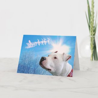 PItbull White Dog Christmas Wish card