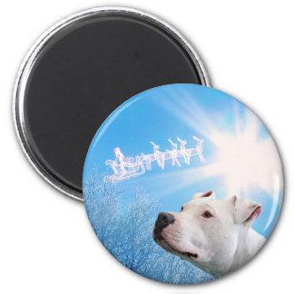 PItbull White Dog Christmas Wish Magnet
