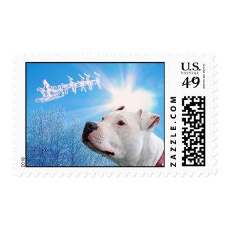 Pitbull White Dog Christmas Wish Postage Stamps