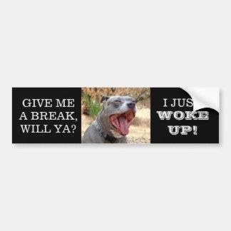 Pitbull Yawning Just Woke Up Bumper Sticker