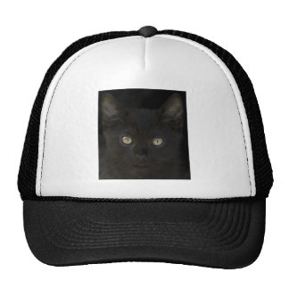 Pitch Black Feral Kitten With Shiny Loving Eyes Trucker Hat