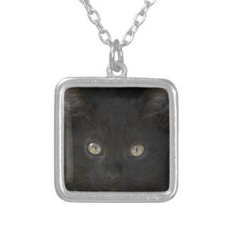 Pitch Black Feral Kitten With Shiny Loving Eyes Custom Jewelry