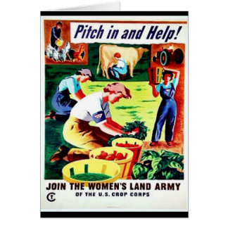 Pitch Inandhelp Cards