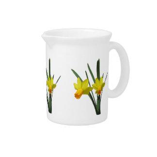 Pitcher - Daffodil