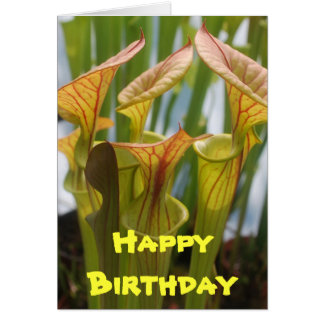 Pitcher Plant Carnivorous Birthday Card