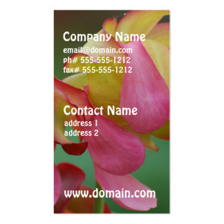 Pitcher Plant Family Business Cards