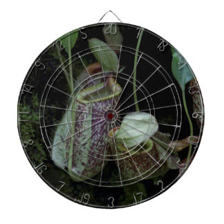Pitcher plant in National Orchid Garden Dart Board