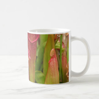 Pitcher Plants Coffee Mug