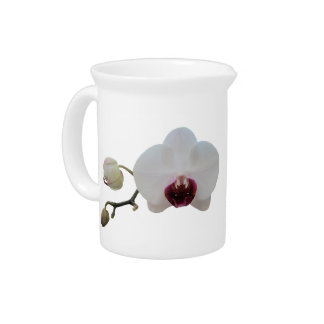Pitcher - Ruby-Lipped White Orchid