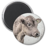 Pitchfork and Red Angus Calf Refrigerator Magnet