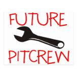 Pitcrew futuro postal