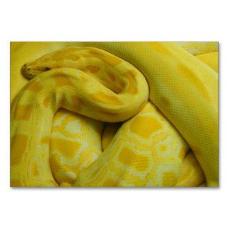 Pitón birmano amarillo
