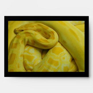 Pitón birmano amarillo sobre