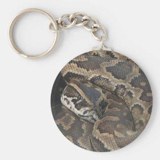 Pitón birmano llavero redondo tipo pin