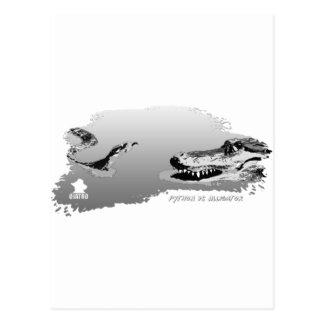 Pitón contra el gris 01 del cocodrilo postales