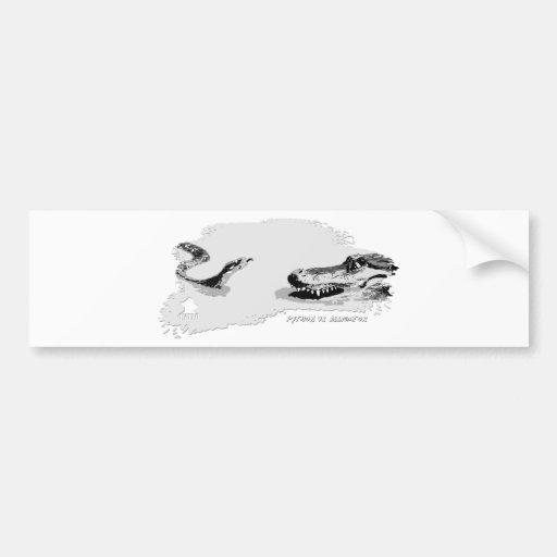 Pitón contra el gris 02 del cocodrilo pegatina para auto