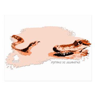 Pitón contra el naranja 01 del cocodrilo postales