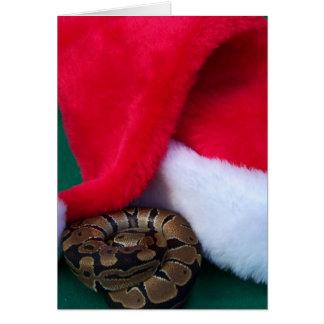 Pitón de la bola al lado del gorra de Santa, navid Felicitaciones