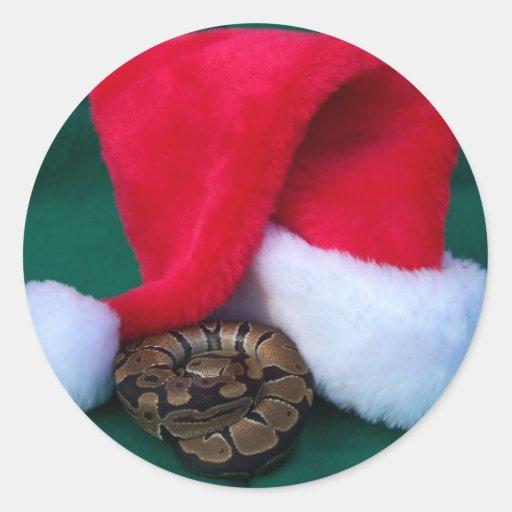 Pitón de la bola al lado del gorra de Santa, Pegatina Redonda