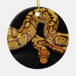 Pitón de la bola de Brown y del oro Ornamento Para Reyes Magos
