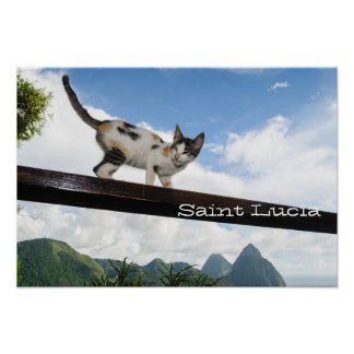 Pitons in St Lucia Poster