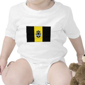 Pittsburgh Pennsylvania Camisetas