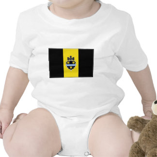 Pittsburgh Pennsylvania Traje De Bebé