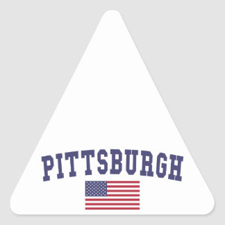 Pittsburgh US Flag Triangle Sticker