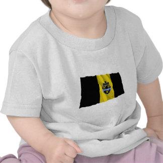 Pittsburgh Waving Flag T Shirts