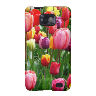 pixabay.comentulips-tulip-bed-colorful-color-52126 samsung galaxy SII carcasa