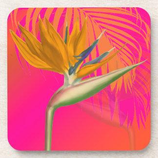 PixDezines bird of paradise/DIY background color Drink Coasters