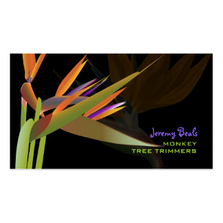 PixDezines bird of paradise ♥♥♥ Double-Sided Standard Business Cards (Pack Of 100)